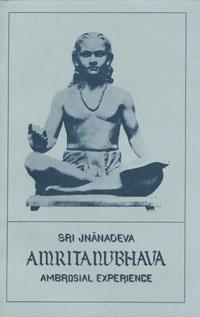 Amritanubhava book cover