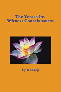 Witness Consciousness book cover
